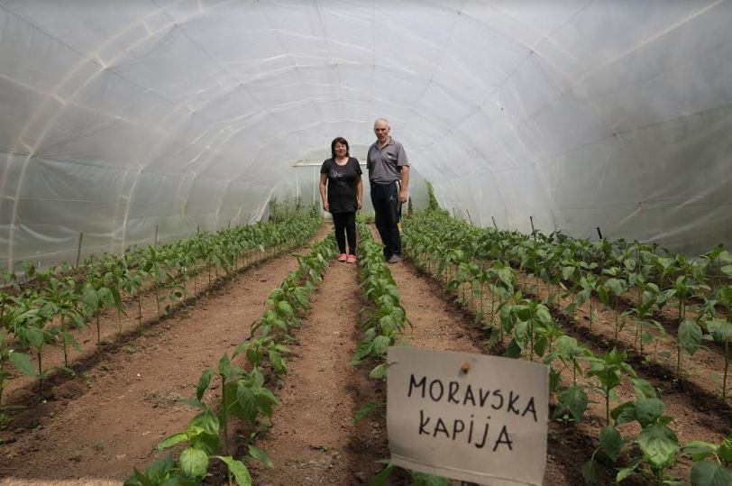 Jasmina i Miroljub Ćirić