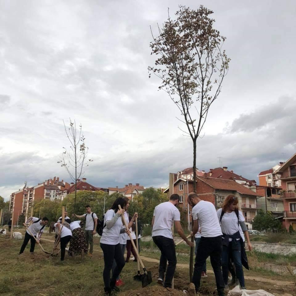 "Ekološka akcija u periodu od 2.11. do 9.11.; Foto. JKP ""Mediana"" Niš"