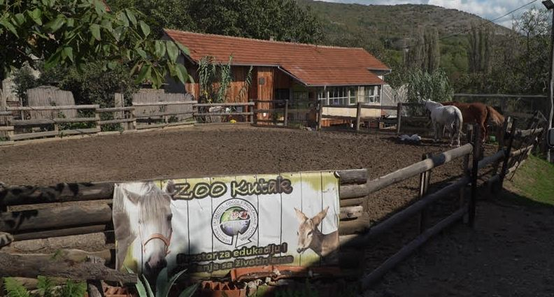 zoo kutak